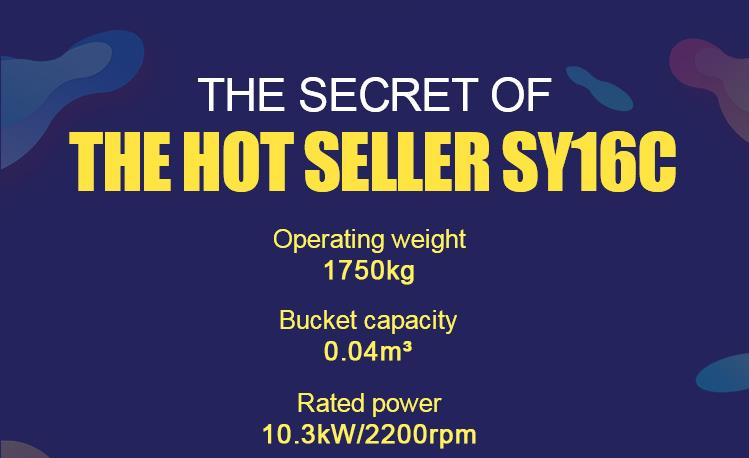 THE SECRET OF THE HOT SELLER SY16C